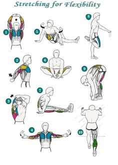 Flexibility Stretches Check List