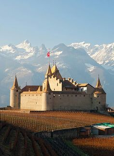 Aigle Castle, Vaud, Switzerland