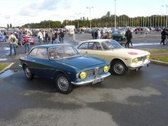 Rare Color: 1965 Alfa Romeo Giulia Sprint GT - Alfa Romeo Bulletin Board & Forums