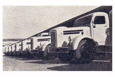 Caminhões Scania-Vabis recém-montados, diante da fábrica da Vemag, em 1954, aguardam serem enviados para as revendedoras da marca. Brasil.