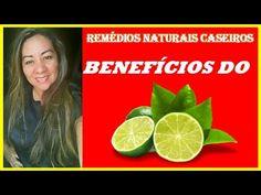 Benefícios do Limão   Descubra a Importância do Limão Para Saúde