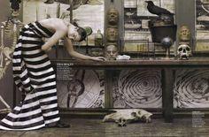 """""""Evoluzione della specie """", pinned by Ton van der Veer"""