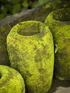 Keith Levit. Chartreuse, design in colour | Garden Design Oxfordshire | Hendy Curzon Gardens