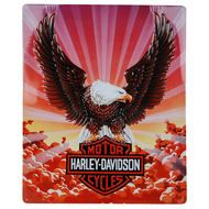 Harley Davidson Eagle with Clouds Sign