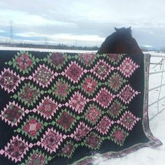 In Spring2014 I called mom up to come with me to the Drayton Valley quilt show. We had a real great day looking at the beautiful projects that the girls from that guild had put on display. Of co…