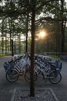 A free bicycle sharing system in National Park de Hoge Veluwe, the Netherlands  makes bicycles available for free to visitors, with much of the area being inaccessible by car.