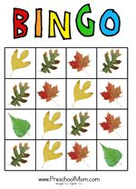 Leaf Bingo Game This bingo game has five different leaves and is a great way to aid children in learning the names of these popular leaves. It's recommended that you print a large photo of each of the types for a calling card to show to children what leaf to look for. Six different boards, two per page.