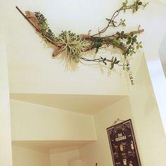 女性で、3LDKのDIY/ナチュラル/流木オブジェ/フェイクグリーン/癒し/ハンドメイド…などについてのインテリア実例を紹介。「階段上り口の斜めになっている壁に流木アレンジを♡ フェイクのエアプランツと合わせて設置しました♪( ´▽`) 流木は軽いので天井付近のアレンジにはオススメですね(^ー゜)」(この写真は 2016-11-11 08:44:03 に共有されました)