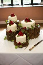 Tree Trunk/Slice CAKE STAND- Wedding/ Party/ Garden/Nature. from ebay from search 'tree trunk slice'