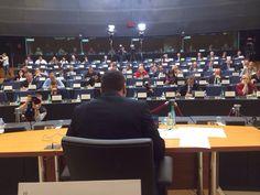 Maros Sefcovic's hearing