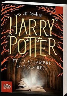 Photo of Harry Potter and the Chamber of Secrets, France Harry Potter Book Covers, Harry Potter Books, Rowling Harry Potter, The Sorcerer's Stone, Chamber Of Secrets, Believe In Magic, Book Cover Art, The Secret, Around The Worlds