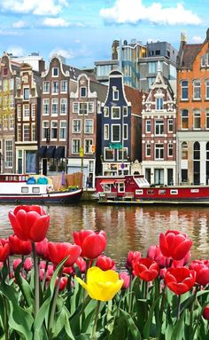 15 Free Things To Do In Amsterdam. An interesting place to head to if it's warm and you're looking for someplace to sit and soak up the Amsterdam atmosphere is the rooftop at Nemo Science Museum. #thingstodo #traveltips #travelinfo #europe #amsterdam #travel Amsterdam Things To Do In, Visit Amsterdam, Amsterdam City, Amsterdam Travel, Amsterdam Netherlands, Amsterdam Itinerary, Windmills In Amsterdam, Amsterdam Tulips, Gardens