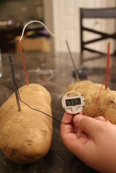 Potato Powered Clock for Science Fair Project