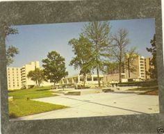 Columbia MO University of Missouri Womans Hall Postcard | eBay