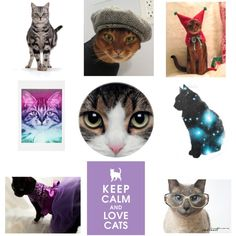 An art collage from July 2012 Folk Art, Digital, Cats, Polyvore, Stuff To Buy, Collection, Design, Women, Gatos