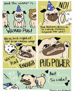 PUG POWER!