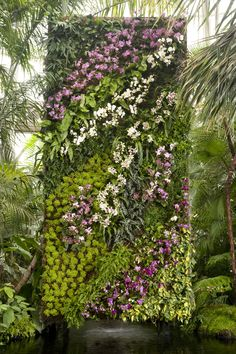 Patrick Blanc vertical garden wall - orchides
