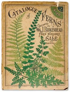 "Items similar to Antique Botanical Print ""Catalogue of Ferns"" Vintage Woodland Floral Illustration - Green Sepia Art Nouveau Garden Print on Etsy. , via Etsy. Illustration Botanique, Illustration Blume, Botanical Illustration, Botanical Prints, Botanical Drawings, Vintage Book Covers, Vintage Books, Vintage Art, Vintage Library"