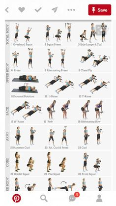 Advice, tricks, as well as resource with respect to getting the most effective e – Dumbell Workout For Women Abs Workout For Women, Ab Workout At Home, Workout For Beginners, Tabata Workouts, Dumbbell Workout, Daily Workouts, Workout Plans, Workout Routines, Workout Ideas