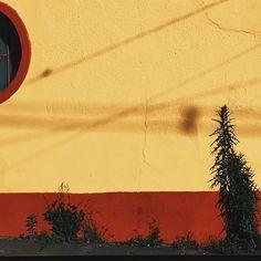 IDK  #idk #photography #wall #street #asthetic  #photobyme 🌙