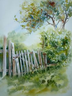 Old fence and trees in watercolor
