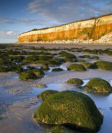 Photo Mug-Hunstanton Cliffs with stratified Red Chalk and underlying Carstone laid down in the Lower Cretaceous epoch, with Upper Cretaceous whit-Cera Norfolk Beach, Norfolk Coast, Best Uk Beaches, Camera World, White Chalk, Epoch, North Sea, Natural World, Cliff