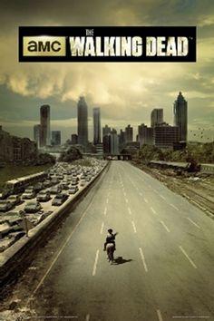 Walking Dead En Prison break zijn mn lievelingsseries omdat het heel spannend is omdat het goede geacteerd is