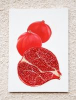 pomegranate_1