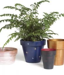 Painting Clay Pots | Fine Gardening