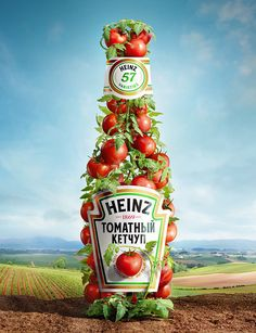 Heinz should make it as a part of their advertisement. I think would be success. It promotes a healthy addition to any dish, even though it is sull of sugar.