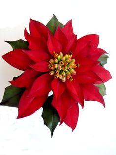 http://sugarartstudio.com/gum%20paste%20flowers-2.html