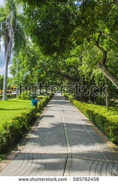 Find monteria stock images in HD and millions of other royalty-free stock photos, illustrations and vectors in the Shutterstock collection. Thousands of new, high-quality pictures added every day. Sidewalk, Royalty Free Stock Photos, Illustration, Pictures, Image, Amor, Cordoba, Parks, Colombia