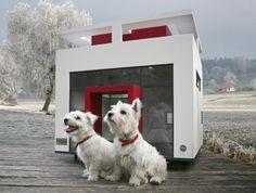 Designer huizen voor honden   Gimmii Magazine