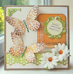 Social Butterfly by kath in westhill, via Flickr