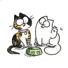 S cat - simon's cat Simons Cat, Cat Jokes, Funny Cat Memes, Funny Cats, Gatos Cat, Cat Toilet Training, F2 Savannah Cat, Love Dogs, Cat Behavior