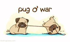 Pug o' War