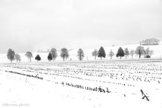 wintertime - null