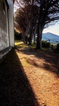 Sanctuary Shadows in Riomaggiore Cinque Terre Italy by Joan Carroll