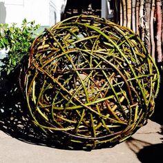 Latest offering ..... @thepottingshedbowral  #willow #ball #garden #sculpture #gardensculpture ...... I love #weaving