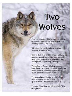 Two Wolves fighting within is an old Cherokee story. There are many versions, this is the first one I read, it is powerful yet simple.
