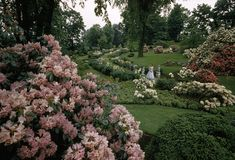 """unrar: """" A woman stands in a formal garden near the Battle of Concord site, David Boyer. Alice In Wonderland Aesthetic, Adventures In Wonderland, Alice In Wonderland Garden, Battle Of Concord, Alpine Plants, Formal Gardens, All Nature, Flowers Nature, Backyard Projects"""