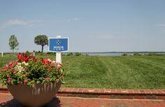 Take a look at Manor Lawn | Hyatt Regency Chesapeake Bay | Jacqui DePas Photography | District Weddings