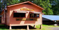 Crip's Camp, Caddo Lake, Uncertain, TX