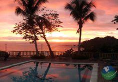 Hotel Costa Verde - Manuel Antonio, Costa Rica. A paradise retreat between beach and rainforest!
