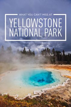 Best Places to Visit in Yellowstone - Top Attractions, Where to See Wildlife, Best Day Hikes, and Essential Tips for Your Visit // Local Adventurer