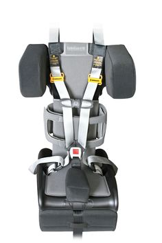 Crelling Harnesses For Aircraft Travel Accessible