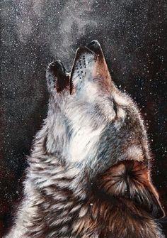 Эскиз волка на фоне ночного неба