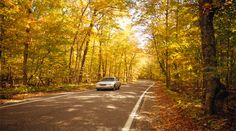 The Tunnel of Trees is an 18-mile stretch of blufftop state highway overlooking Lake Michigan. This section of Michigan Highway 119, as it is more practically known, is designated as a state Heritage Route for its scenic beauty.