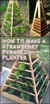 This Project Gives You Home Grown Strawberries in a Limited Garden Space (vegetable planter boxes pallets) Vegetable Planter Boxes, Vegetable Garden, Building A Raised Garden, Raised Garden Beds, Raised Bed, Organic Vegetables, Growing Vegetables, Organic Gardening, Gardening Tips
