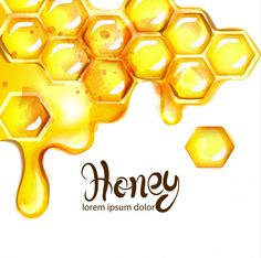 Find Honeycomb Bees Vector Watercolor Template White stock images in HD and millions of other royalty-free stock photos, illustrations and vectors in the Shutterstock collection. Bee Art, White Stock Image, Bottle Design, Bee Keeping, Honeycomb, Art Drawings, Artsy, Clip Art, Templates